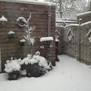 7 december, het blijft maar sneeuwen